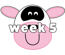cow web 5