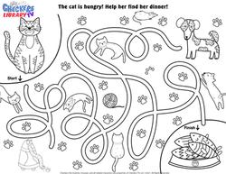 Domestic cat maze