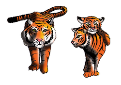 Animal Alphabet T