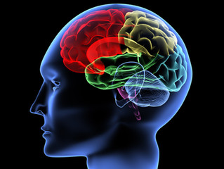 Parkinsons sjukdom: fysisk aktivitet - en viktig del av behandlingen!
