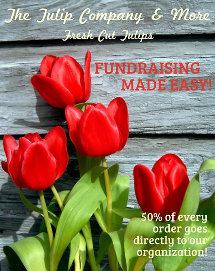Fresh cut tulip fundraiser by The Tulip Company garden center