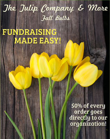 Tulip bulb fundraiser by The Tulip Company garden center