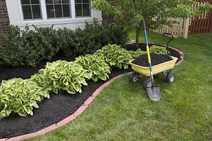 Hardwood mulch installation at The Tulip Company garden center