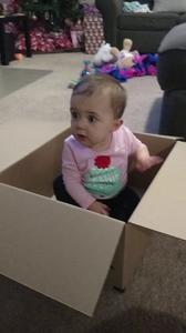 Box baby 1
