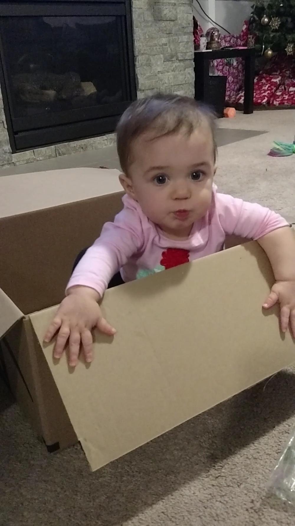 Box baby 2