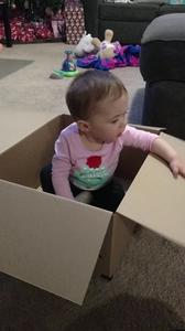 Box baby 3