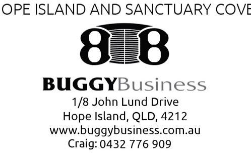 Buggy/Golf Cart Service