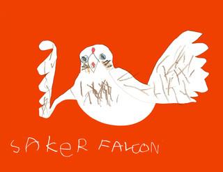 Saker Falcon.jpg