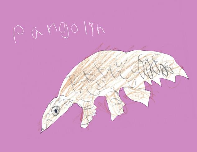 Pangolin.jpg