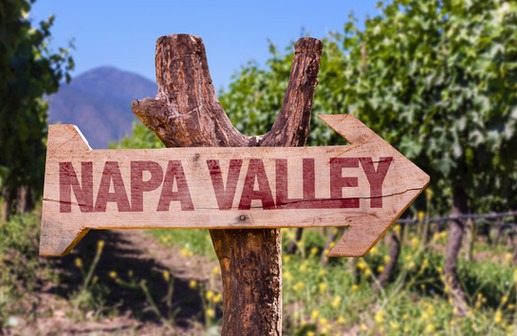 We Drive Napa Valley
