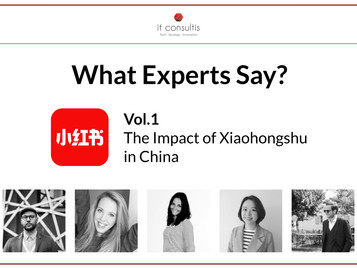 What do Experts say? - The Impact of XiaoHongShu in China