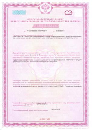 08-Лицензия на проект. ИИИ_1.jpg