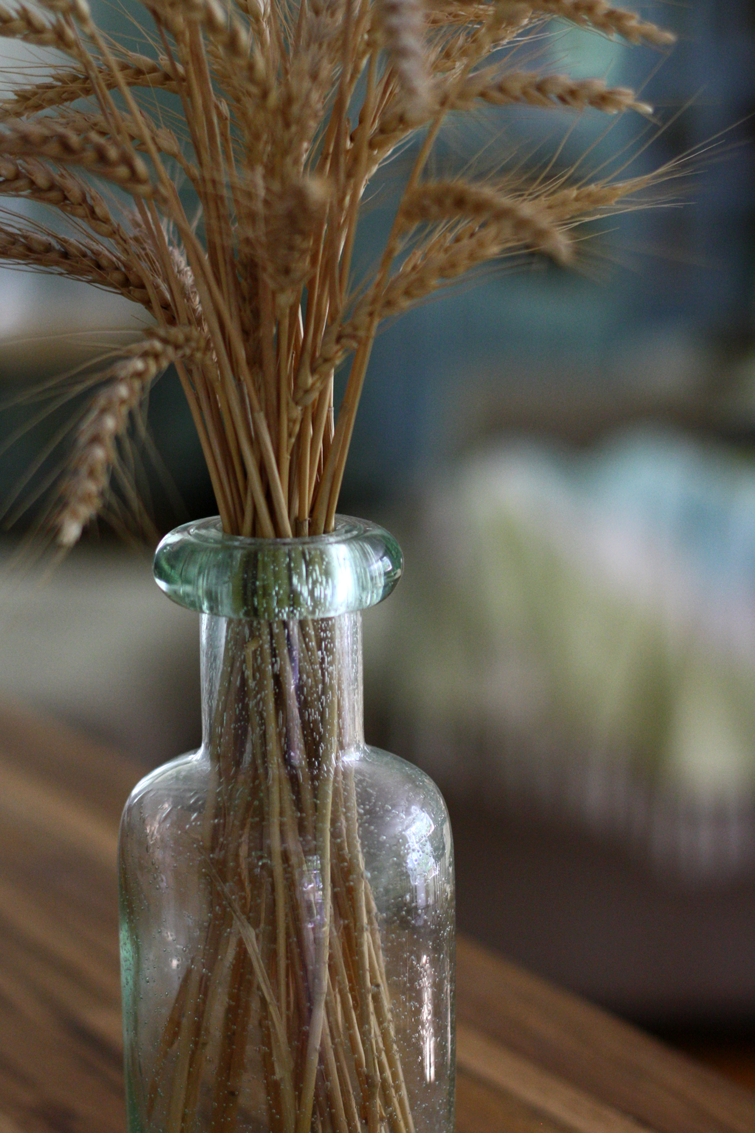 Kansas wheat in Connecticut glass 3