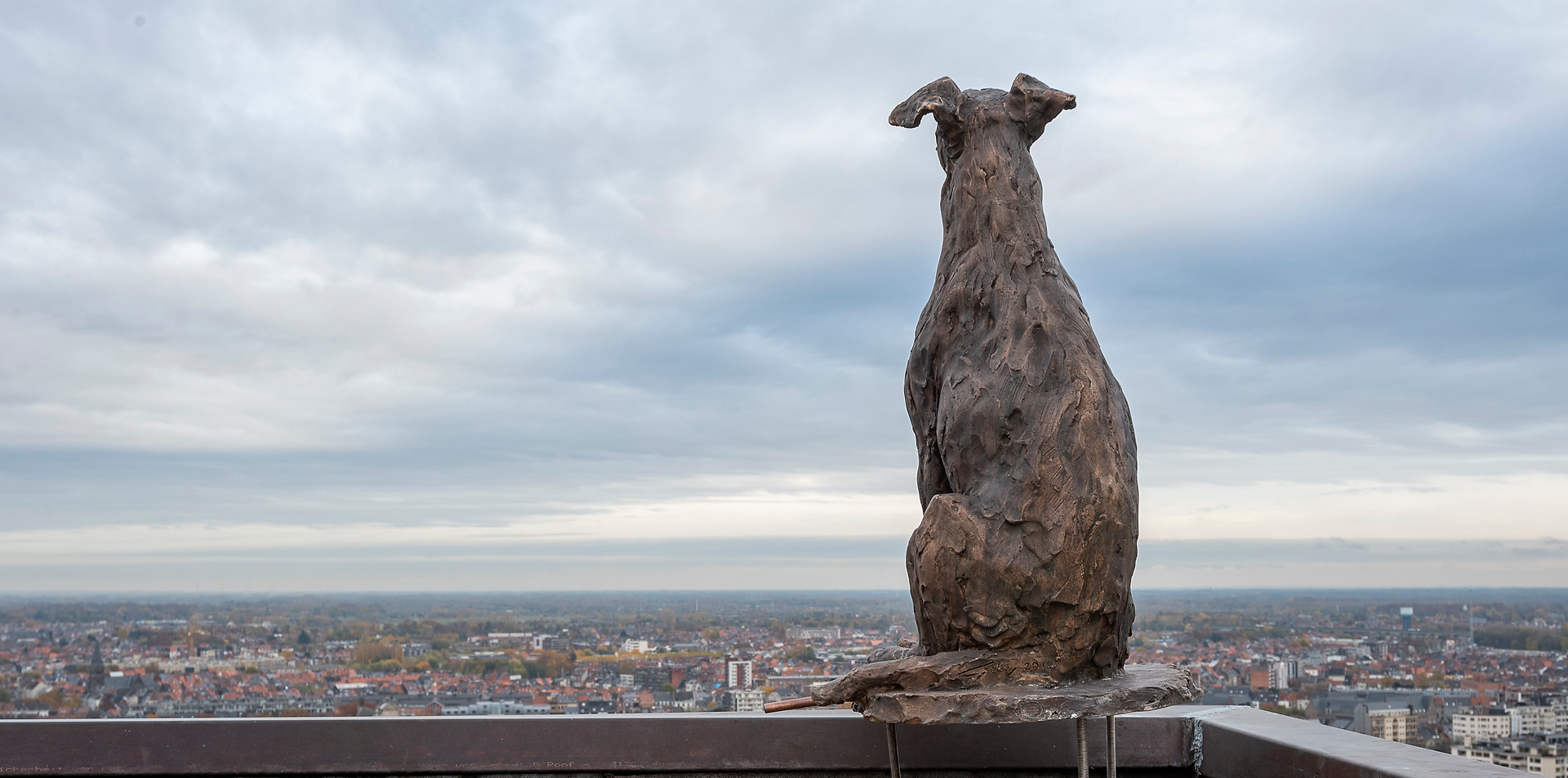 Dog on Book tower Gent