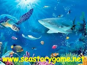 안전한 바다이야기 사이트 이용방법에 대해 안내 해 드리겠습니다.