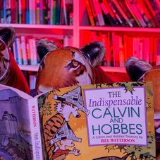 Voracious Readers