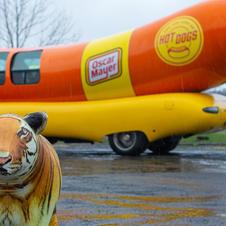Hot Dog Jimmy