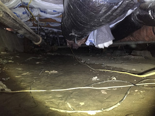 San Carlos Crawlspace Cleanup