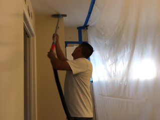 Mold Remediation Redwood City