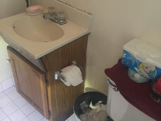 Mold Inspection in Richmond, CA