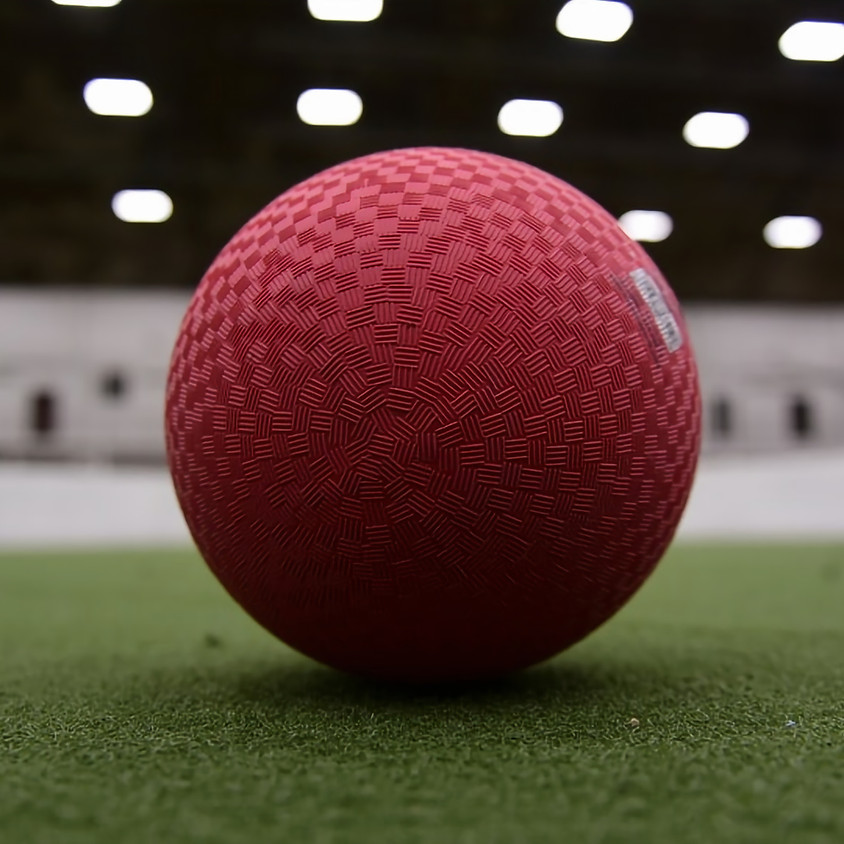 Dodgeball Charity Event