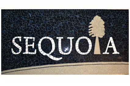 Sequoia גיבוש צוות חברת