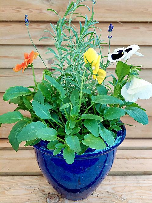 8inch CERAMIC Autumn Winter planted Pot