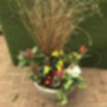 potplant1.jpg
