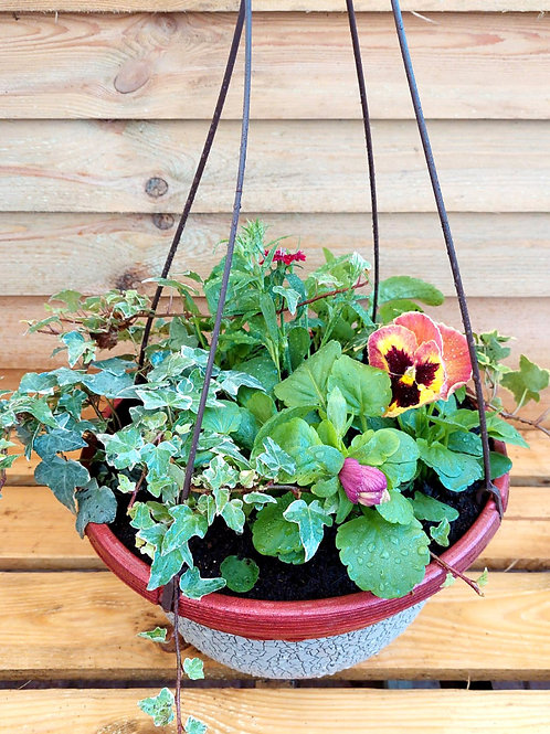 NEW DESIGN 12inch Autumn Winter Planted Hanging Basket
