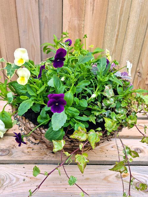 Autumn Winter 12inch WICKER Planted Hanging Basket