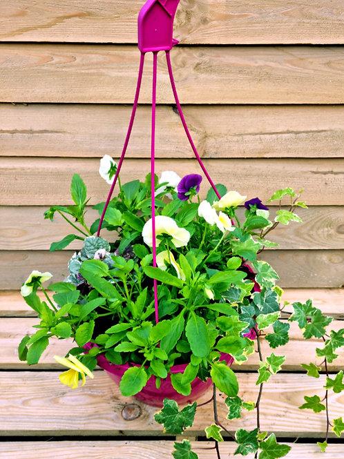 Autumn Winter Planted Hanging Basket
