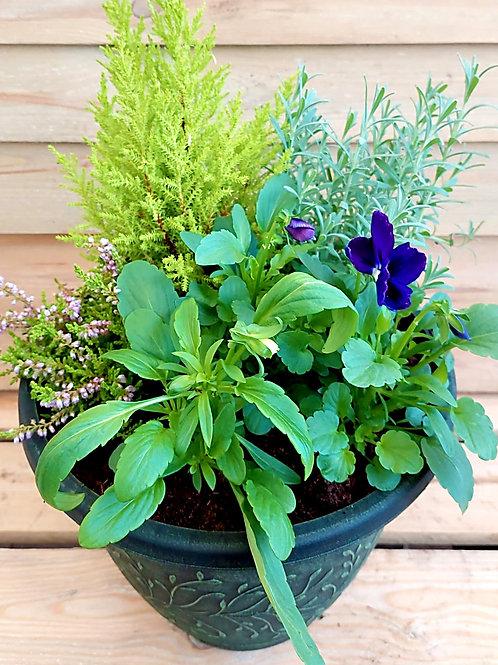11inch PLASTIC Autumn Winter planted Pot