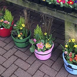 colouredplanters25.jpg