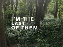 IM-THE-LAST-OF-THEM