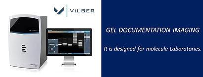 Vilber Gel documentation imaging