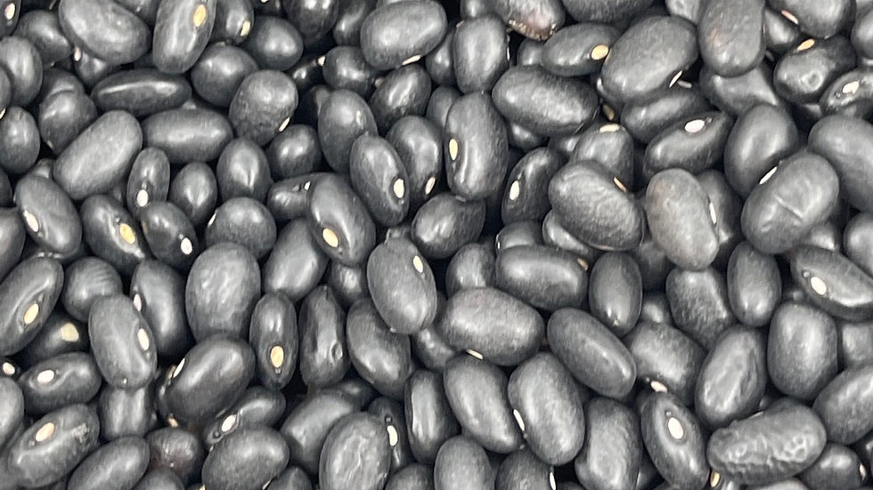 Haricot noir bio