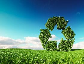 Ipaille-recyclage-WEB.jpg