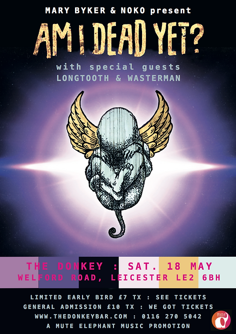 Leicester_Flyer