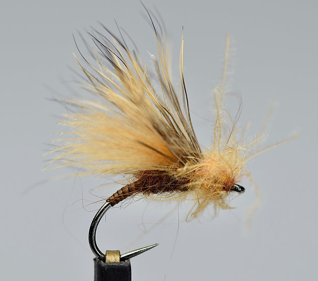Quill body CDC emerger