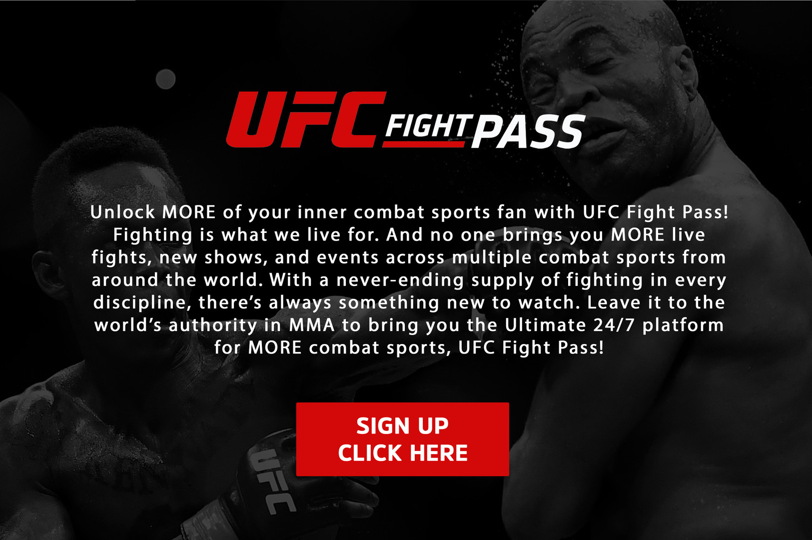 ufc fight pass - site.jpg