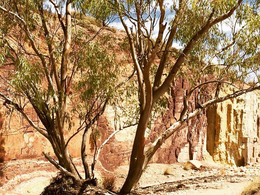 'The Stone of Dreamtime' | Visiting Ancient Ochre Pits