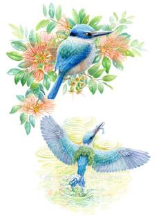 birds-kingfisher.jpg