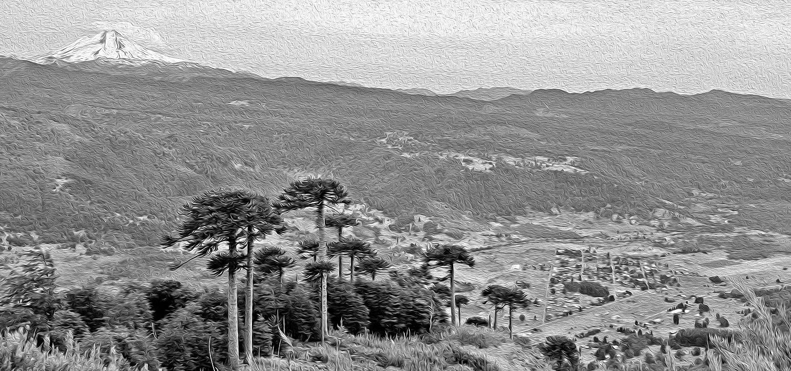 paisaje2.jpg