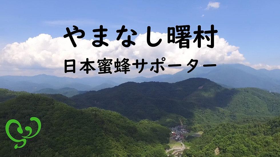 やまなし曙村日本蜜蜂サポーター1口/1年間