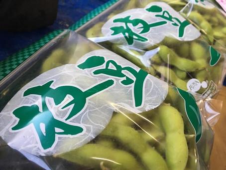 国産枝豆をおいしく食べるために覚えておきたい!保存方法