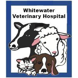 ww vet.jpg