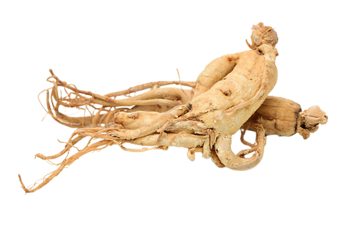 American Ginseng Spagyric Extract