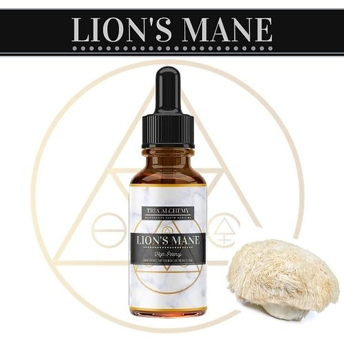 Lion'a Mane Spagyric Tincture