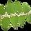 Thumbnail: Japanese Knotweed Spagyric Tincture