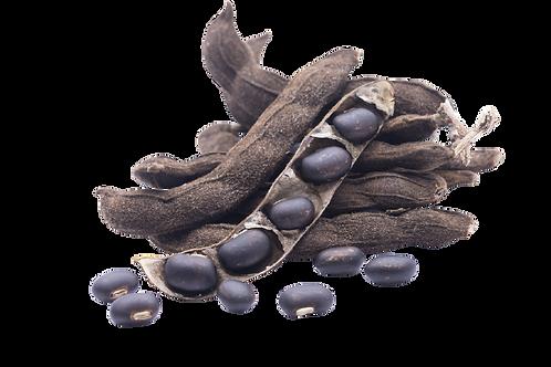 Mucuna Pruriens Spagyric Tincture